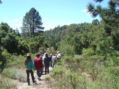East West Herb School students walk a trail Quail Hollow, Ben Lomond, CA